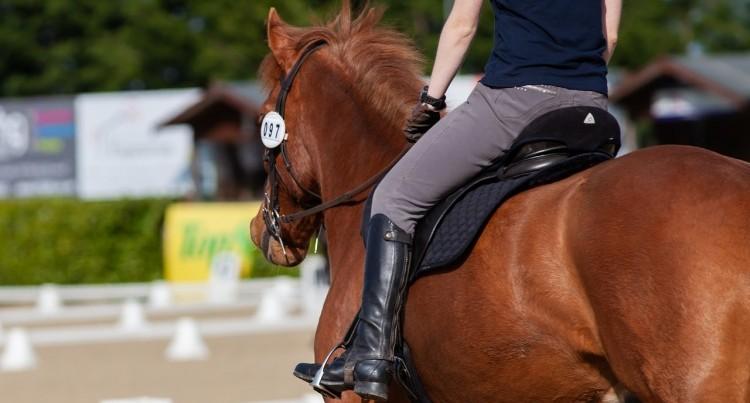 f4f4b16a87a8c Wszelkie pomoce jeździeckie możemy podzielić na naturalne, czyli nasze  ciało: dłonie, które trzymają wodze, łydki oraz nasz dosiad (ciężar i  balans ciała) ...